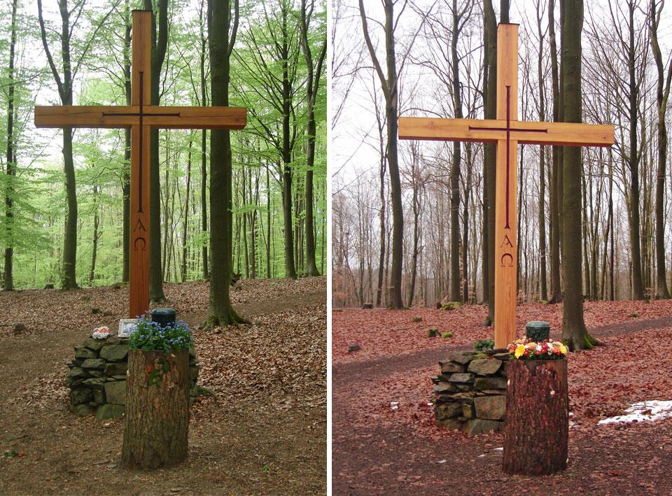 Göbel Bestattungen Friedwald